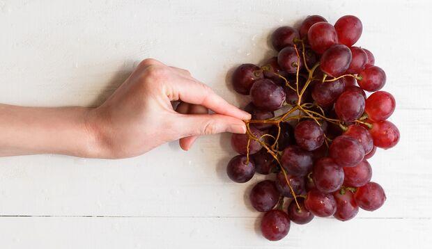 Blaue Weintraubenkerne sind mega gesund