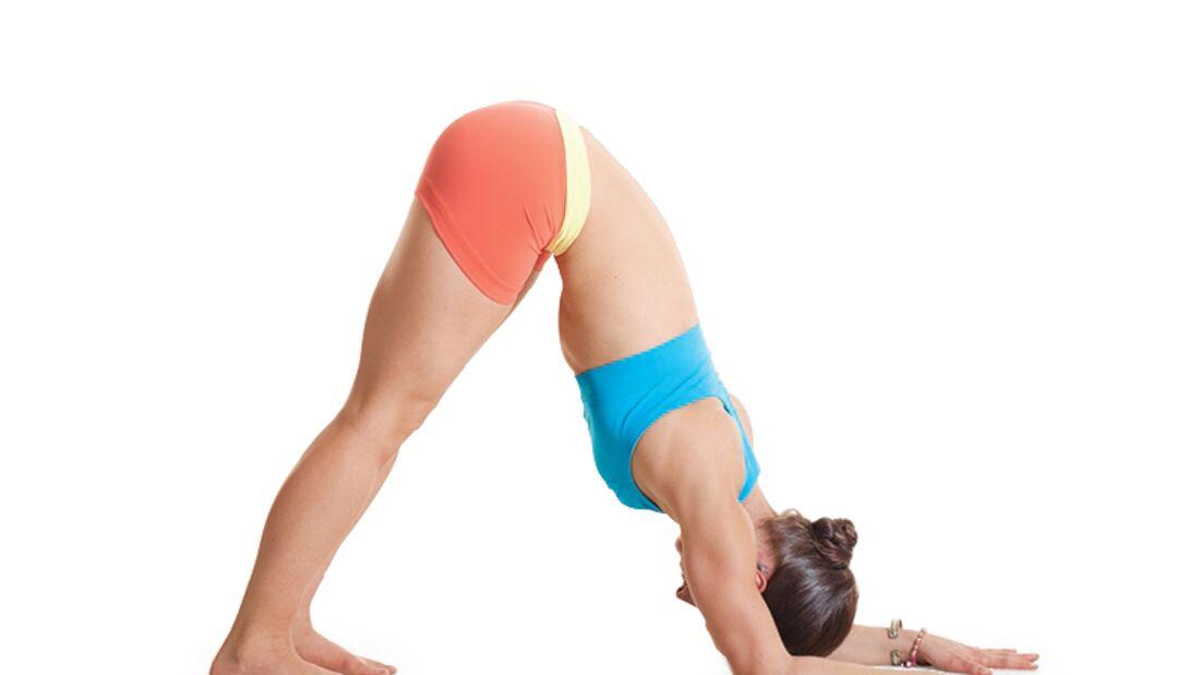 Den Körper entgiften beim Yoga: Delfin