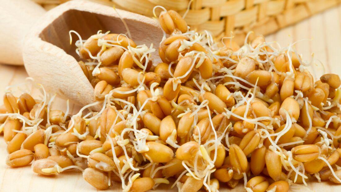 Ein Esslöffel Weizenkeime enthält 52 Mikrogramm Folsäure