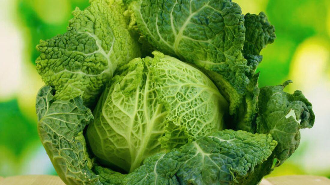 Eine Portion (200 Gramm) Wirsing enthält 98 Milligramm Vitamin C