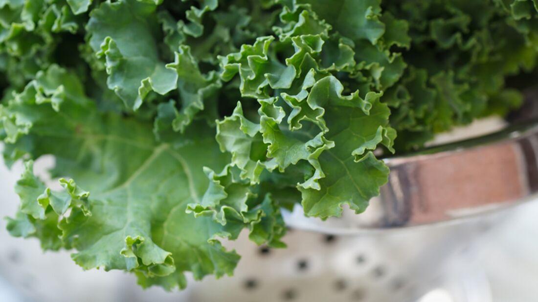 Eine Portion Grünkohl (200 Gramm) enthält 120 Mikrogramm Folsäure