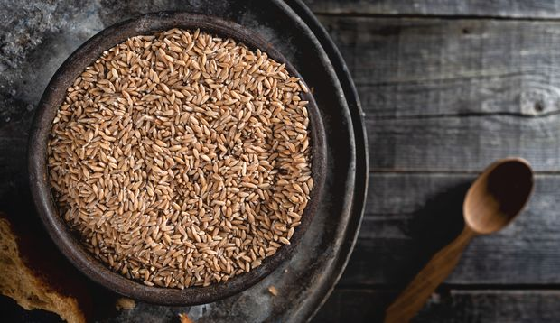 Emmer gehört zu den ältesten Getreidesorten