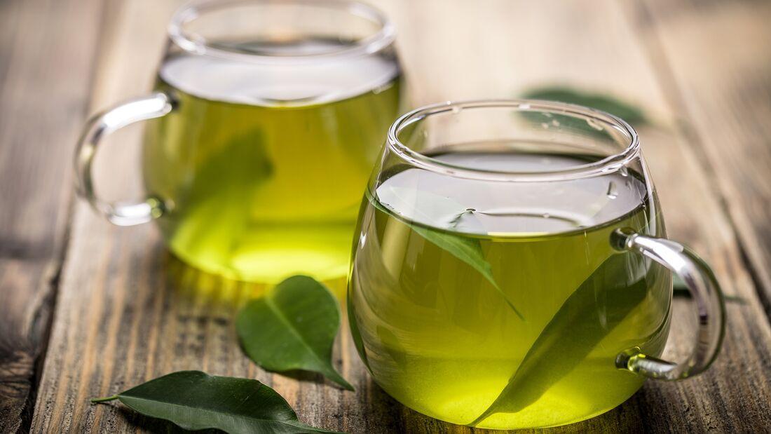 Fatburner Grüner Tee