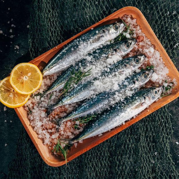 Fisch ist reich an langkettigen und gesunden Omega-3-Fettsäuren