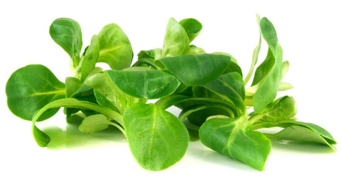 In Feldsalat steckt viel Vitamin A