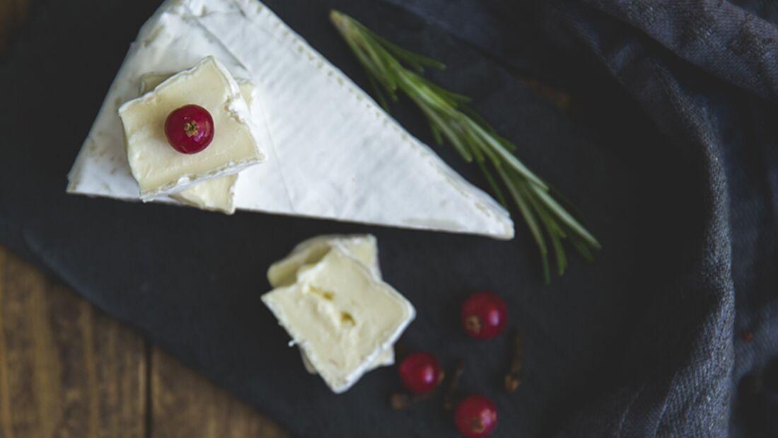 Käse stärkt die Knochen