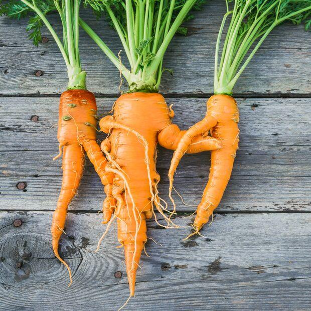 Karotten mit Makel