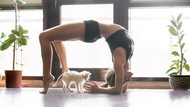 Kleines Yoga-ABC