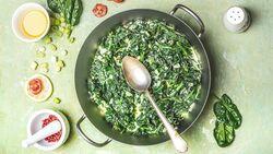 Köstliche Spinat-Rezepte warten darauf von Ihnen verputzt zu werden