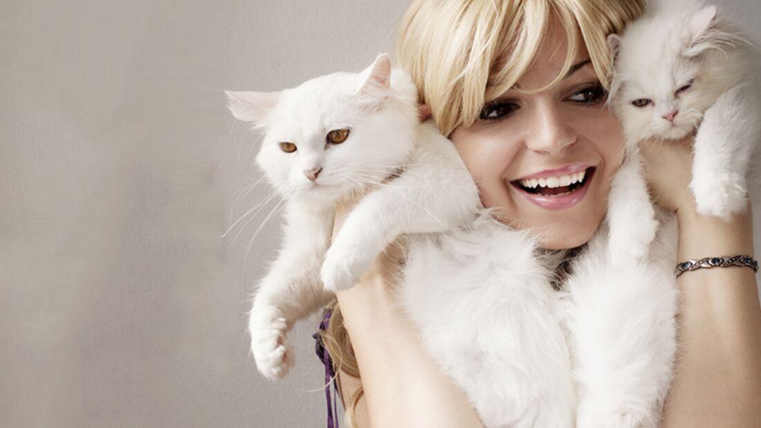 """Männer verstehen: Jedes Hunde- oder Katzenbaby mit einem """"Oooooooooh"""" kommentieren"""