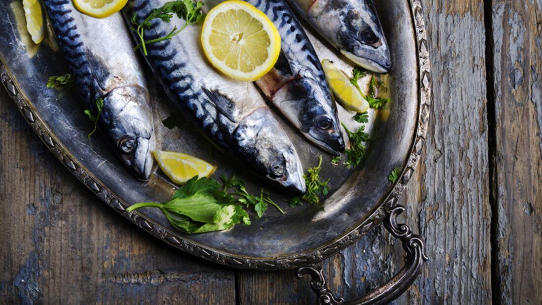 Makrelen liefern Vitamin B6
