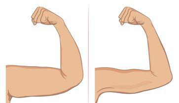 In einer Woche fette Arme abnehmen