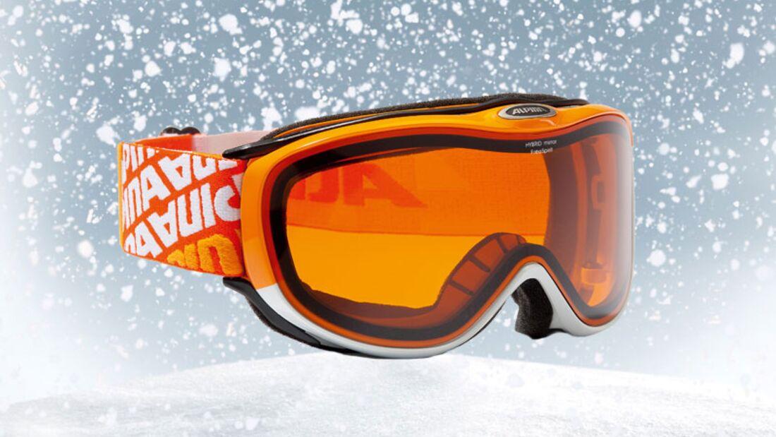 Skibrille von Alpina, zirka 50 Euro