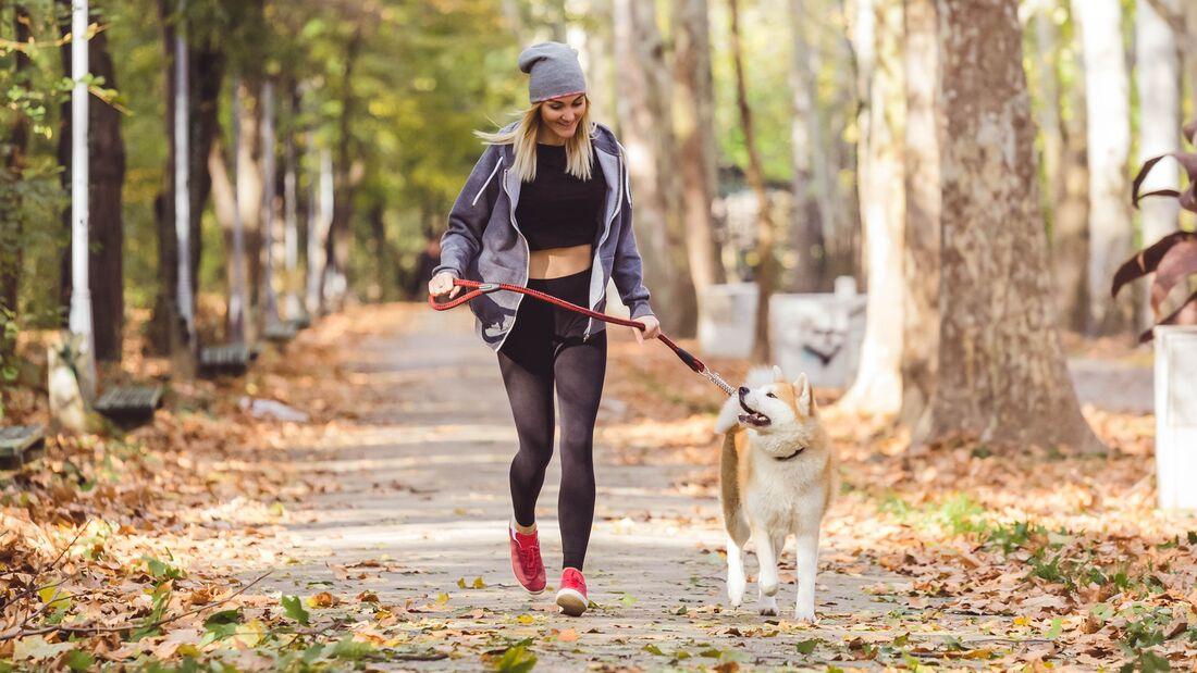 Sport tut Ihnen und Ihrem Hund gut