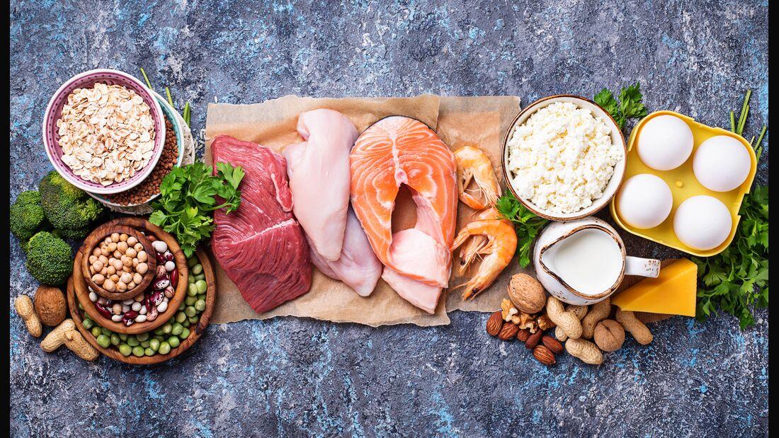 Kidneybohnen eiweiß