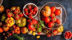 Tomaten-Rezepte: Lecker & einfach