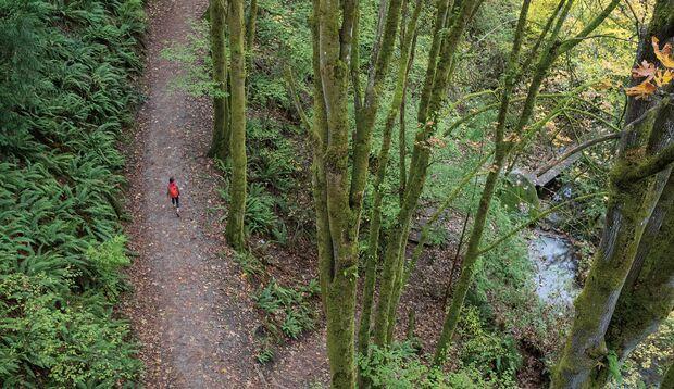 Training im Freien – Ein ganz anderes Körpergefühl