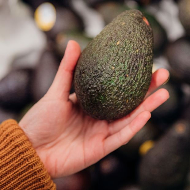 We love Avocado! Im Salat, auf Brot, aus dem Ofen, ...